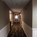 Doubletree Amherst