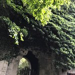 Photo of Botaniska Tradgarden
