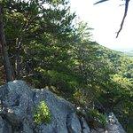Buzzard Rock