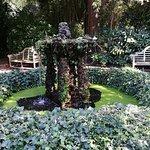 Photo of Litlington tea gardens