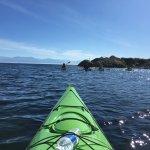 Looking out to Juan de Fuca Strait
