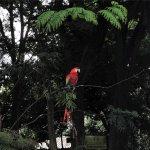 Foto de Parque Zoologico Santa Fe