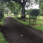 Long driveway to Glendine House