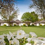 Photo of Protea Hotel by Marriott Oudtshoorn Riempie Estate