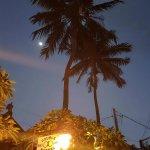 Late night Coconuts.