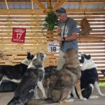 Learn from an expert training 140 sled dogs.
