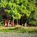 Damba tree house