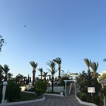 Photo of El Mouradi Club Selima