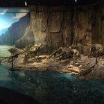 Photo de Three Gorges Museum