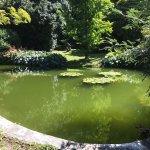 Photo de i Giardini di Villa Melzi