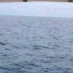 Photo of Spirit Of The Sea