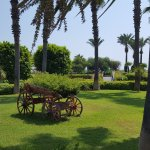 Miracle Resort Hotel Foto