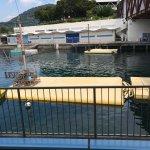 Foto de Izu Mito Sea Paradise