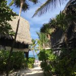 Photo of Luv Tulum