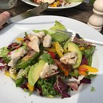 Chicken Avocado Salads