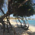 MVC Eagle Beach Foto