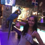 The lovely Parrot with my Daughter