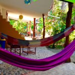 Hammocks by the suites
