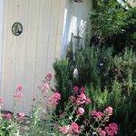Foto di Backyard Garden Oasis B&B