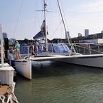 The sailing catamaran