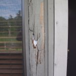 Rotten wood siding on our porch, view 1