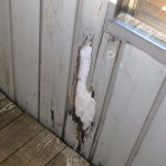 Rotten wood siding on our porch, view 2