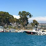 Foto de Dana Point Harbor