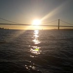Photo of Palmayachts Boat Tours