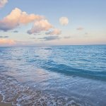 Morning Beach and Ocean