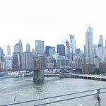 Photo of Gray Line New York Sightseeing