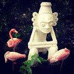 Billede af Dreams Palm Beach Punta Cana