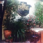 Foto de Treehouse Cafe