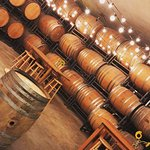 Seating Area surrounded by Wine Barrels