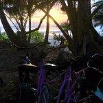 sunrise, Port Douglas town tour