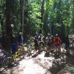 deep in the rainforest, bump track tour