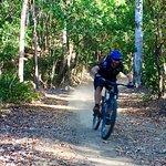 bump track half day ride