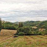 Photo de Agriturismo La Cima