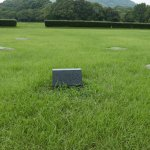 Photo of Dazaifu Government Remains