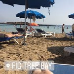 Photo of Fig Tree Bay