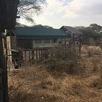Photo of Ruaha National Park