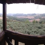 Photo of Agriturismo Montalbino