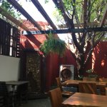 Photo of El Traspatio Restaurante Terrazas