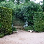 Photo of Jardines de Santa Clotilde
