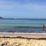Photo de Spiaggia della Biodola
