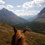 Photo of Banff Trail Riders