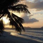 Photo de Tropical Fusion Beach Bar and Grill