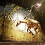 loading horses on ships