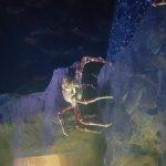 Photo of Oregon Coast Aquarium