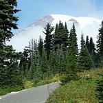 Mt Rainier on the Skyline trail