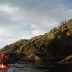 Amazing scenic kayaking tour